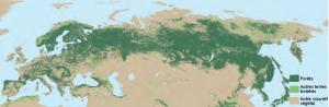 foreste europa